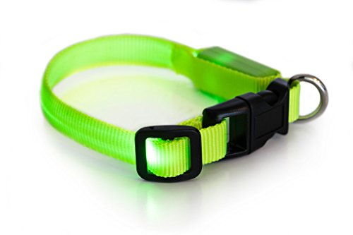 - LED Dog Collar to Keep Your Dog Safe - - Flashing Dog Collar with Extra Batteries - Your Best Friend Deserves Safe Night Walks (Large Min (10-12 inches), Green)
