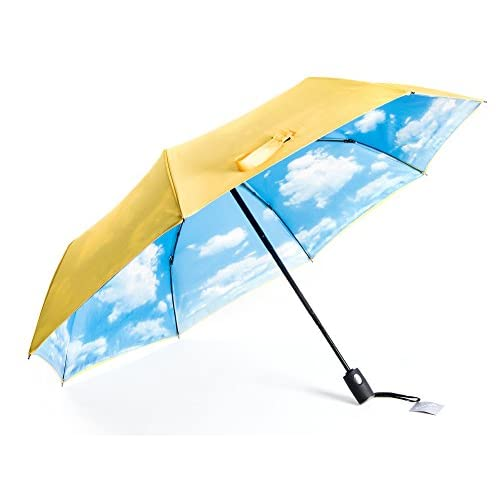 RITENG 23 Inch Automatic Open and Close Winderproof Compact Travel Foldable Umbrella in Multiple Colors