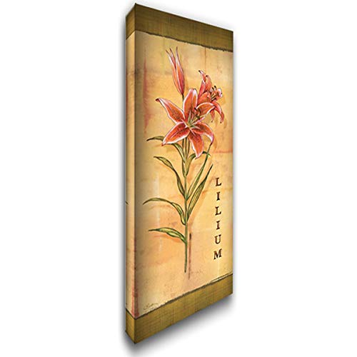 Les LYS III 19x40 Gallery Wrapped Stretched Canvas Art by Audrey, Charlene