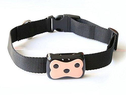 Creation® Wasserdichte Mini-GPS-Tracker für kleine PET Hund GPS Locator Freie Kragen kostenlose Online-Tracking-Plattform
