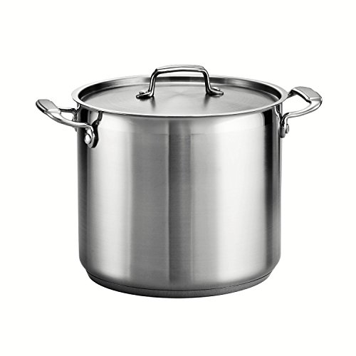 Commercial Beer Brewing (Tramontina 80120/000DS Tramontina Gourmet Stainless Steel Covered Stock Pot, 12-Quart)
