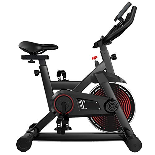 TZZD Indoor Cycling Bike Professional Exercise Cycle Bike Sport Bike with LCD Digital Monitor Phone Holder