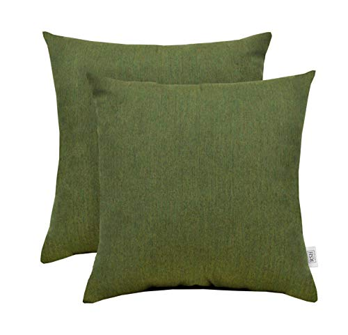RSH Décor Set of 2 Indoor Outdoor Decorative Square Throw Pillows made of Sunbrella Canvas Fern Green (17
