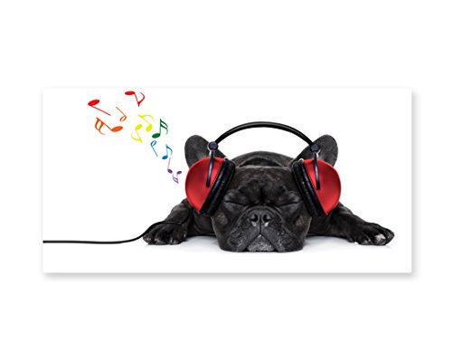 Lunarable Dog Lover Wall Art, Bulldog Listening to Music with Earphones While Relaxing Sleeping on Floor, Gloss Aluminium Modern Metal Artwork for Wall Decor, 23.5 W X 11.6 L Inches, Black White Red -