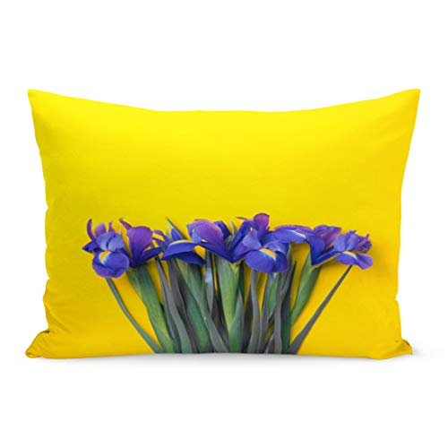 (Emvency Throw Pillow Covers Blue Iris Lilac Lie on Yellow Top View Flatlay Pillow Case Cushion Cover Lumbar Pillowcase Decoration for Couch Sofa Bedding Car Home Decor 20 x 30 inchs)