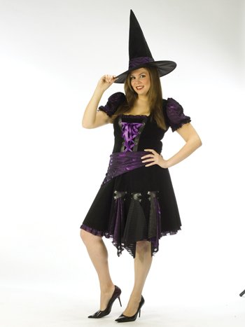 Plus Punk Witch Adult Costumes Purple (Costumes For All Occasions Fw120035 Witch Purple Punk Adlt)