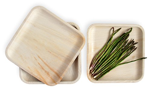 Leafily Palm Leaf Plates - 10 inch Square - Heavy Duty - Elegant - 100% Compostable - Better than Bamboo or Wood - Disposable - Biodegradable - Premium Party Plates - USDA Certified - 22 Count