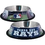 MLB Dog Bowl MLB Team: Tampa Bay Rays