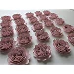 24-Piece-Blush-Pink-Carnations-Set-15-Scalloped-Paper-Flowers-Small-Roses-For-Decorating-Girl-Baby-Shower-or-Nursery-Light-Pink