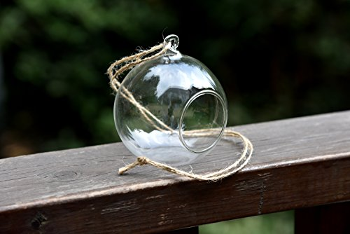 4 X Hanging Clear Glass Bauble Sphere Ball Candle Tea Light Holder Plant Terrarium, 8cm in diameter, Perfect for Garden Outdoor Wedding Decoration (Holders Baubles)