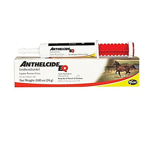 Anthelcide Equine Paste (24 gm)