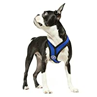 Gooby 04110 Choke Free Comfort X Harness for Small Dogs, Large, Blue