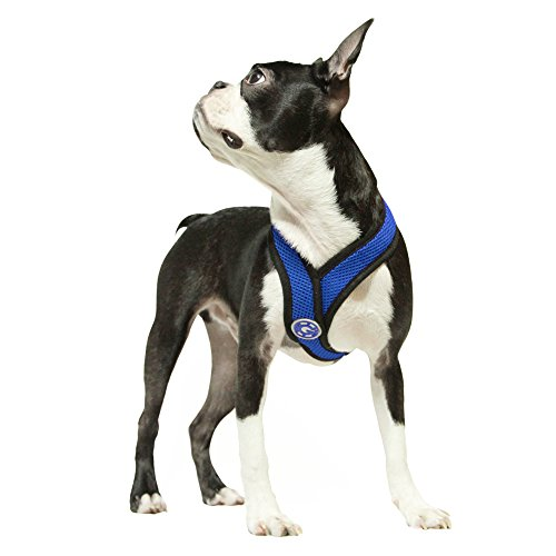 gooby-gooby-choke-free-comfort-soft-dog-harness-blue-x-large