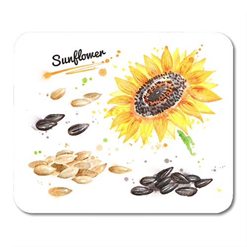 Emvency Mouse Pads Brown Agriculture Watercolor of Sunflower Pile Seeds Peeled and Unpeeled Paint Smudges Splashes Yellow Mouse pad Mats 9.5