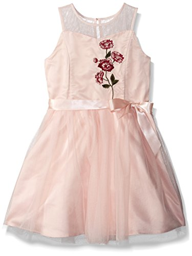 ZUNIE Girls' Big Embroidered Floral Dress with Ribbon at Waist, Blush, 12 ()