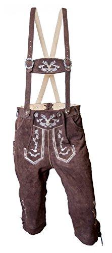 Almwerk Herren Trachten Lederhose Kniebund Modell Hipster, Farbe:Braun;Lederhose Größe Herren:56