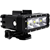 TELESIN Scuba Diving Underwater LED Fill Light with Dual Rechargeable Batteries 300 Lumen POV Flashlight Torch Mount Kit for GoPro Hero 5 4, Session and Hero 3 3+
