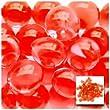 1 X Vase Filler Gel Beads RED - 4oz Makes 3 Gallons - Water Storing Gel