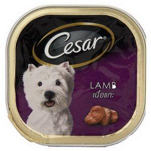 5 X Cesar Canine Cuisine 100 G Canned Dog Food Amazing of Thailand (Cesar Lamb)