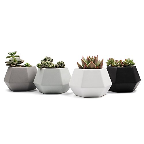 Sun-E 4 in Set 4Inch Ceramic Modern Style Hexagonal Pattern Semi-Luster Surface Succulent Plant Pot Cactus Plant Pot Flower Window Pot Container Planter Full Colors by SUN-E