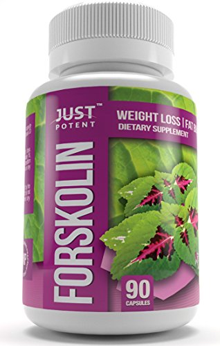 Just Potent High Grade Forskolin Extract :: 400mg Coleus Forskohlii Per Serving :: 20% Forskolin :: 90 Capsules