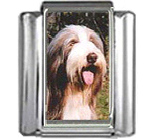 Stylysh Charms Bearded Collie Dog Photo Italian 9mm Link DG062