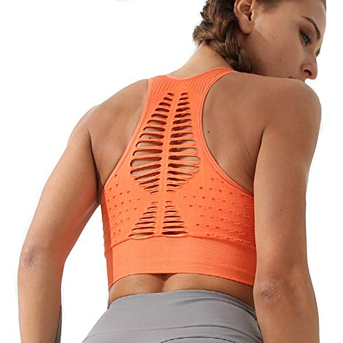(High Impact Seamless Sports Bra Women Yoga Bra Running Crop Tops Workout Fitness Activewear Racerback Sports Bras (L, Active Orange) )