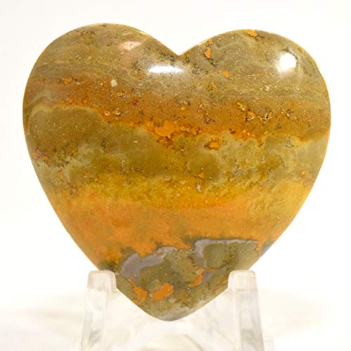 41mm Bumble Bee Jasper Heart Sparkling Banded Mineral Polished Multicolor Natural Crystal Love Gemstone Heart - Indonesia + Acrylic Display Stand ()