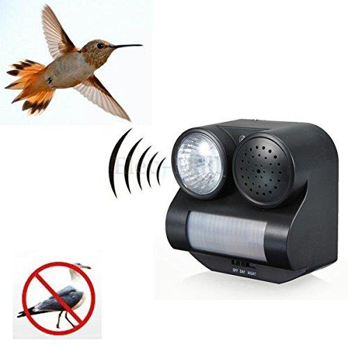 pir-motion-activated-sensor-sound-flashlight-animal-bats-bird-repeller-repellent