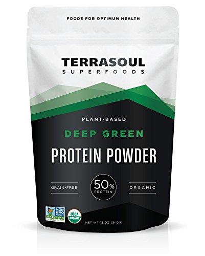 Deep Protein (Terrasoul Superfoods Organic Deep Green Protein Powder (Probiotic, Grain-Free), 12 Ounces)
