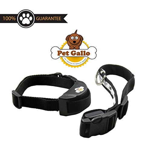 [New Model]pet gallo,Dog No Bark Collar Electric Anti Bark Shock Control with 7 correct levels Stimulation of No Harm Warning Beep and Shock,safe for 12 to120 pound dogs,Bonus led collar+Ebook gift