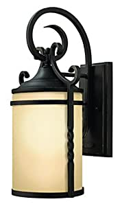 Hinkley 1140OL-GU24 Traditional One Light Wall Mount from Casa collection in Bronze/Darkfinish,