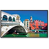 NEC Display V423 42in Large Screen 1 300:1 Composite/Component/S-Video/VGA/DVI/HDMI/DisplayPort/RJ45