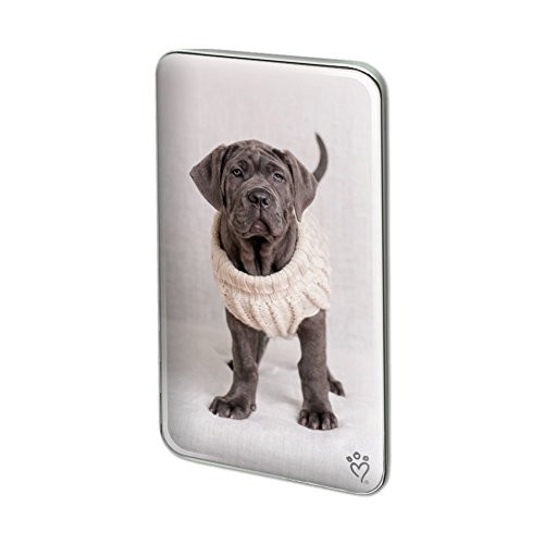 GRAPHICS & MORE Neapolitan Mastiff Dog Nifty Sweater Rectangle Lapel Hat Pin Tie Tack Pinback