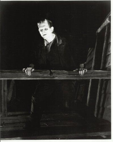 (Boris Karloff as Frankenstein 8x10 Photo looking down from balcony)