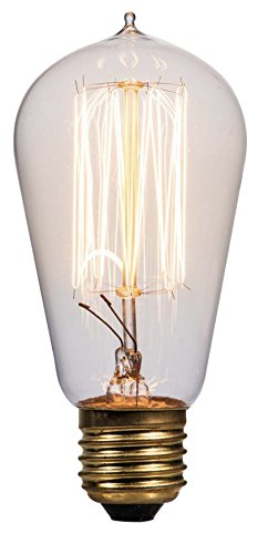 Litex Vintage 60-Watt Dimmable Warm White St18 Vintage Incandescent Decorative Light Bulb -