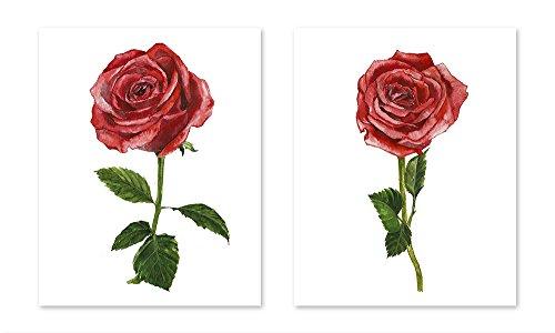 Red rose art #A110 - set of 2 art prints(8x10).Red rose poster.Red rose wall art.Red rose pictures.Red roses painting.red flower art.red flower wall art.Red rose flower art prints. from AntonyPrint