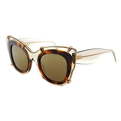 pomellato-pm0003s-cat-eye-acetate-women-transparent-beige-havana-brown003-48-24-140
