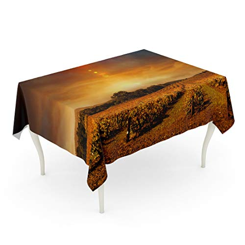 Tarolo Rectangle Tablecloth 52 x 70 Inch Vineyard Beautiful Sunset Over Barossa Valley in Autumn Wine Landscape Panoramic Winter Farm Table Cloth