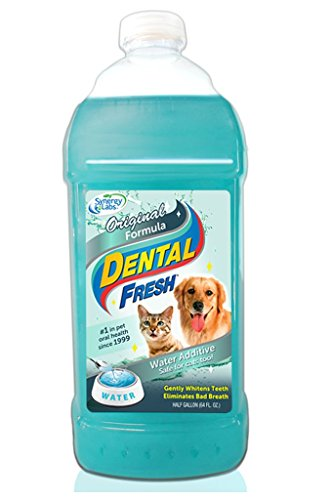 SynergyLabs Dental Fresh Original Formula, 1/2 gallon by SynergyLabs