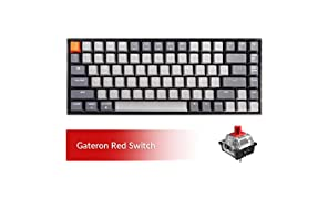 Keychron K2 Bluetooth Mechanical Keyboard with Gateron Red Switch/White LED Backlit/USB C/Anti Ghosting/N-Key Rollover/Compact Design, 84 Key Wireless Keyboard for Mac Windows
