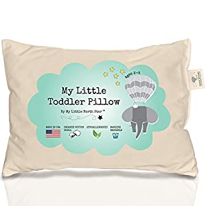 100 Organic Cotton Toddler Pillow Hypoallergenic