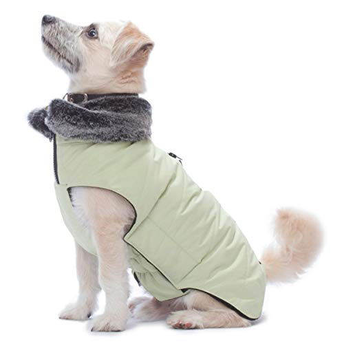 Dog Gone Smart Tamarack Coat Jacket, Lime Green, 16