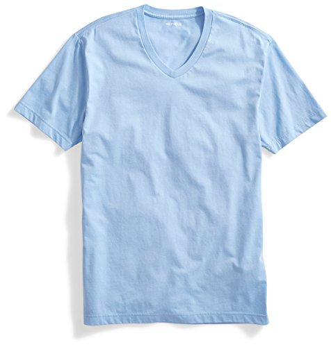 Goodthreads Men's Short-Sleeve V-Neck Cotton T-Shirt, Light Blue, Large by Goodthreads