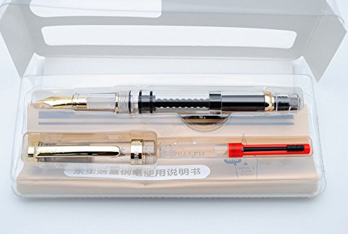Wing Sung 698 Piston Fountain Pen (Transparent with Golden Clip)
