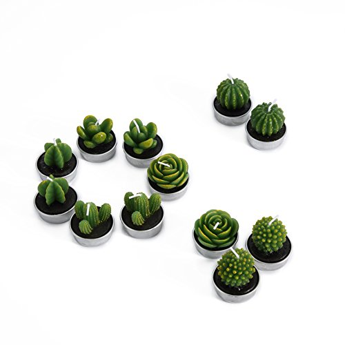 Decorative Scented Smokeless Cactus Tealight Candles, Cute Mini Succulent Plants Candles (Perfect for Home Decor/ Birthday Gift/ Christmas Festival/ Wedding Props/ House-Warming Party), Green, 12 pcs