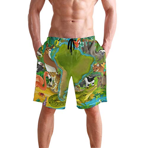 Dragon Sword Cartoon Animals in South America Men's Quick Dry Board Shorts Swim Trunks