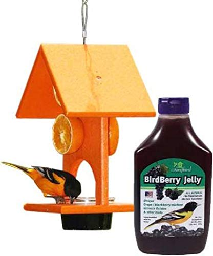 (BestNest Recycled Plastic Oriole Feeder and Jelly)