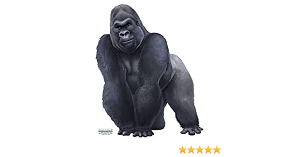 Gorilla Wall Decal ~Hand Painted Looking Vinyl Peel /& Stick 6107721 Create-A-Mural