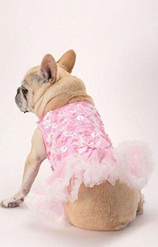 - Pink 3D Floral Embellished Dog Dress Style DOG-059, Pink, XS